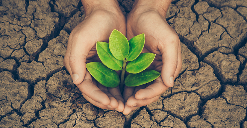 This Earth Day Adopt These 5 Eco-Friendly Ideas to Save Environment
