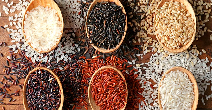 The Versatile Rice – Know the Top 8 Varieties & Health Benefits