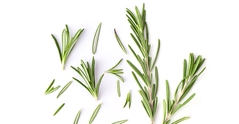 Five Possible Health Benefits of Rosemary Herb