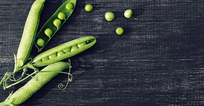 Food Trend: All You Need to Know About Pea Protein