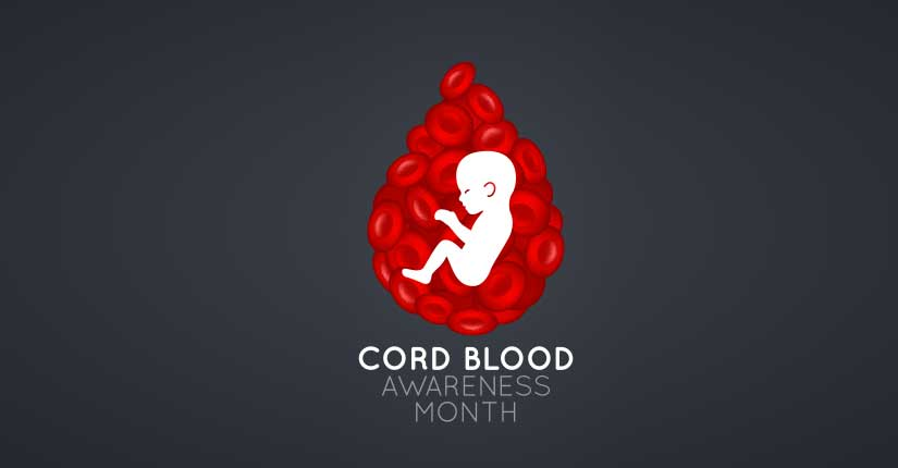 What is Cord Blood- Everything You Need to Know