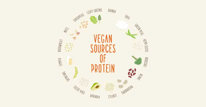 How to Get Enough Protein If You are On a Vegan Diet