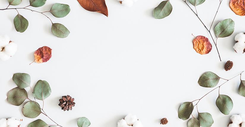 Stock on Healthy & Seasonal Produce for Autumn