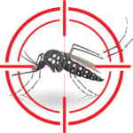Monsoon Infections- Know the Difference Between Dengue and Malaria