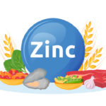 Top 6 Best Food Sources of Zinc