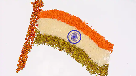 Happy Independence Day 2020: Nutritionist Gives 4 Tips To Get Freedom From Unhealthy Lifestyle