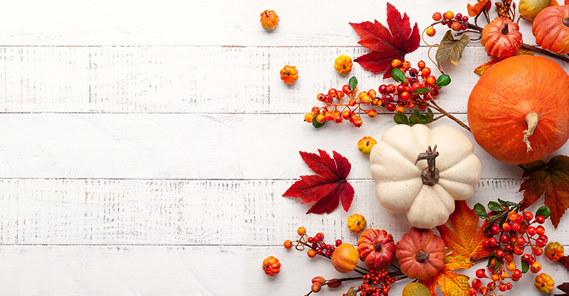 Autumn Seasonal Food Must-Haves in Your Diet