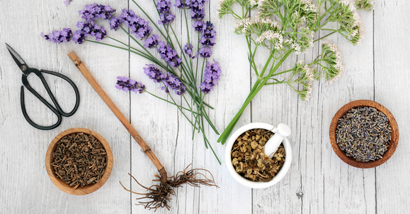 #StressRemedies: Try Planting These Easy To Grow Herbs at Home