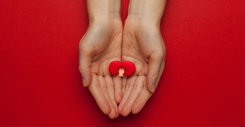 This too shall pass: 5 ways in preventing Kidney Stones