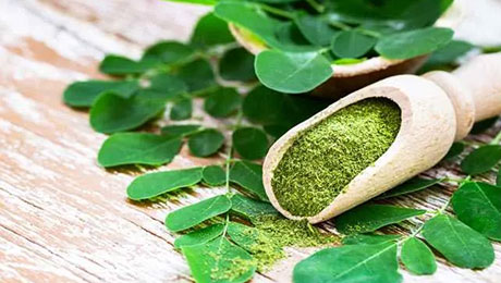 Know about Moringa and its Benefits