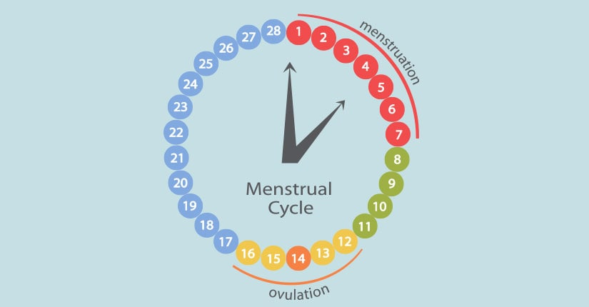 5 Home-Remedies to Regularize your Menstrual Cycle