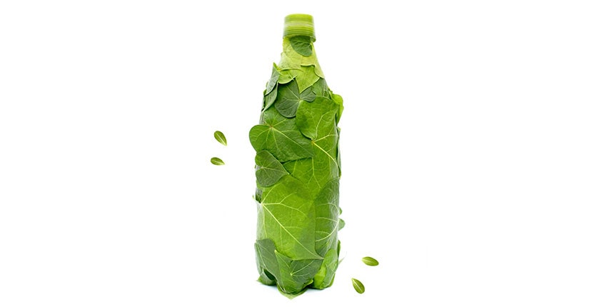 Biodegradable Water Bottle: Latest Trend to Watch out