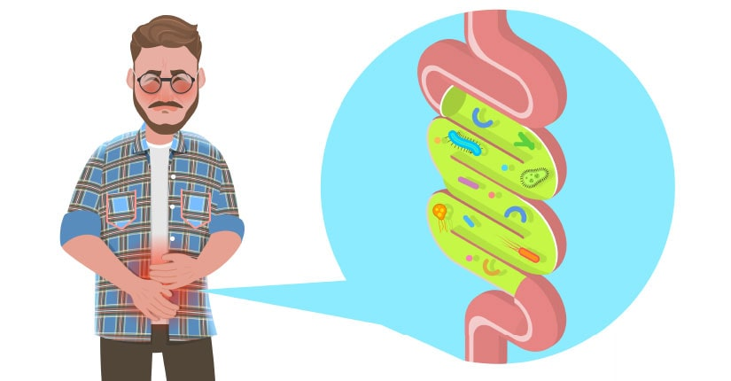 Know How your Lifestyle Affect the Gut Friendly Bacteria