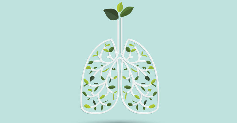 The Importance of Lung Health